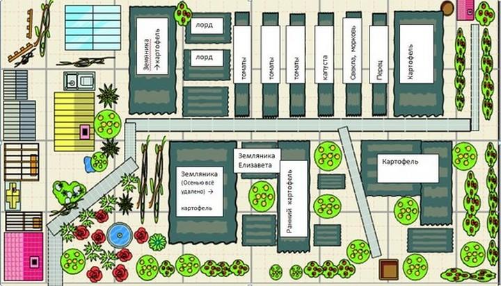 Стоит сделать подробный план-схему участка – где и как будут распределены культуры, цветник, теплицы